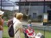 2007 jún - Návšteva ZOO Spišská Nová Ves a návšteva DSS Sp. Štvrtok