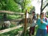 06_EKO_park_Kolmanova_zahrada
