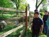07_EKO_park_Kolmanova_zahrada