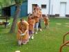 06_Indiansky_den